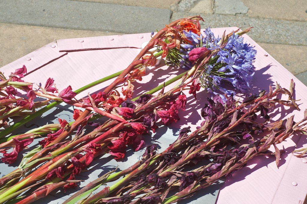 close-up of indehiscent and wilting pink and red gladioli and violet hyacinth on the top of the pink cardboard coffin